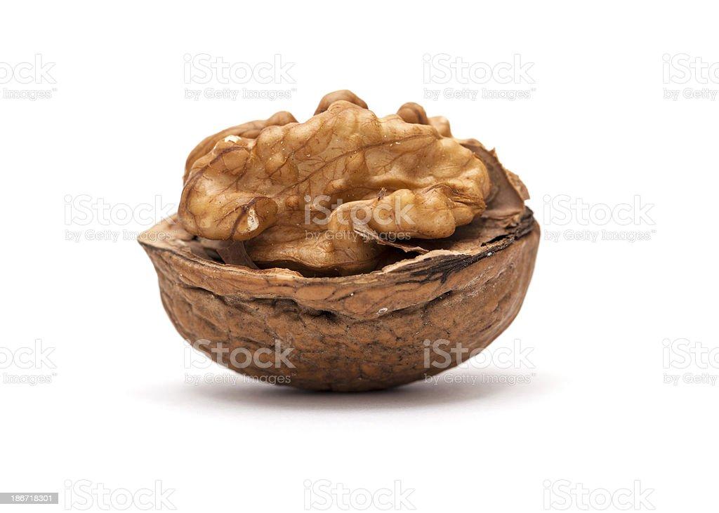 Walnut Isolated on White Background royalty-free stock photo