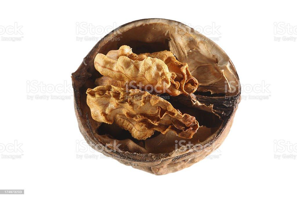 Walnut isolated on white royalty-free stock photo