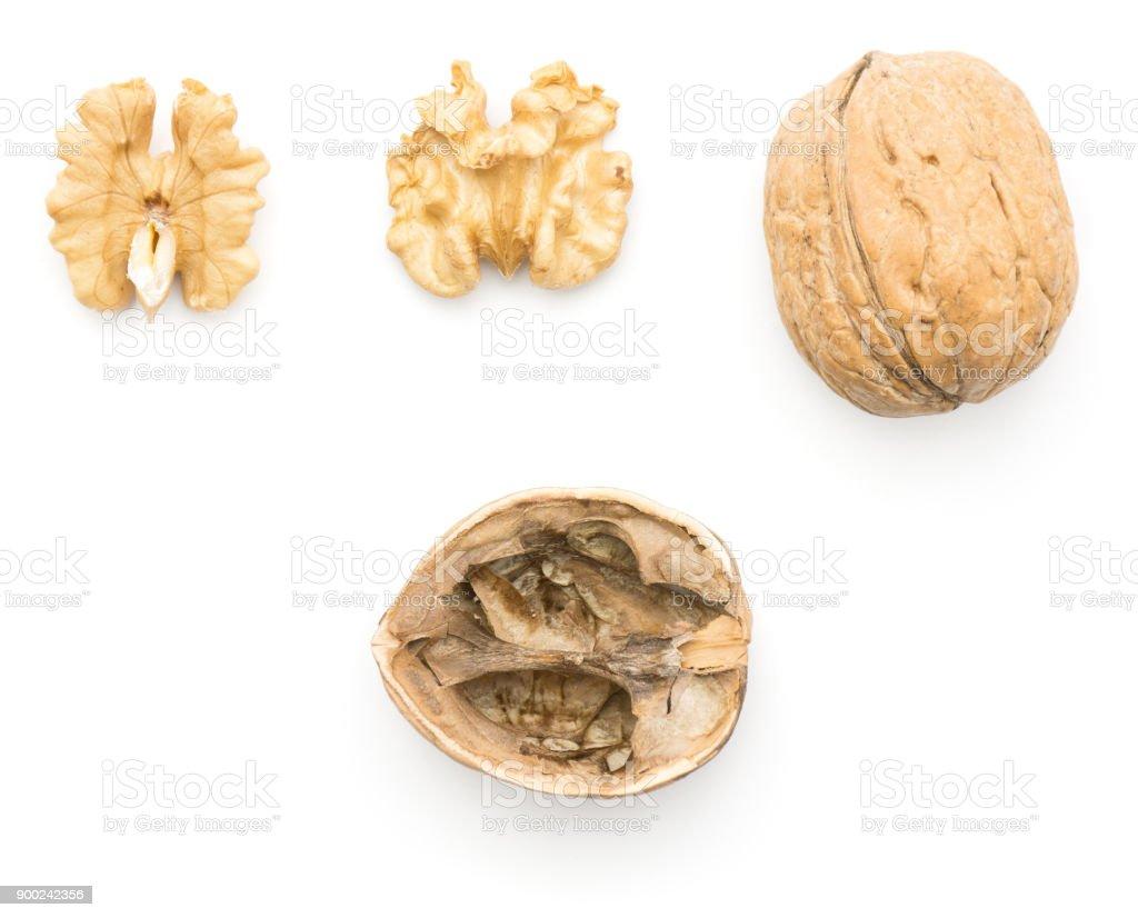 Walnut isolated on white stock photo