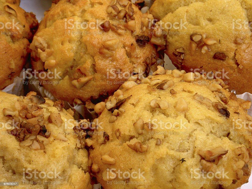 Walnut muffins royaltyfri bildbanksbilder
