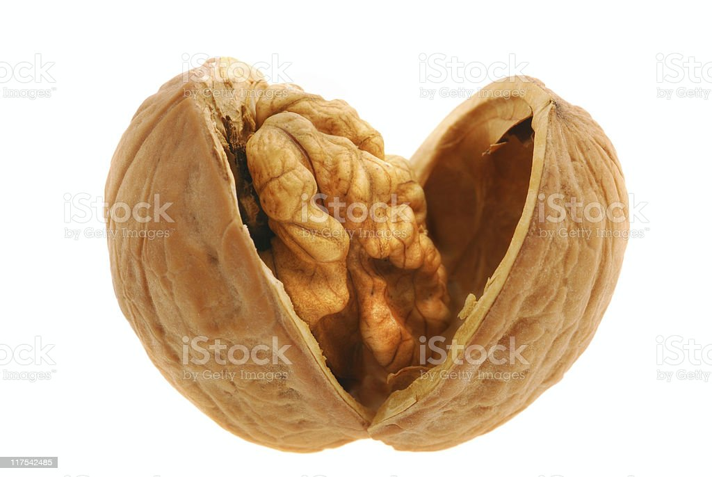 Walnut open isolated stock photo