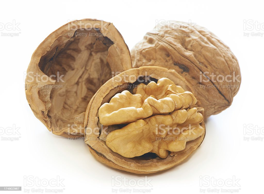 Walnut royalty-free stock photo