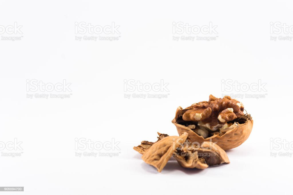 Walnut (white background) stock photo