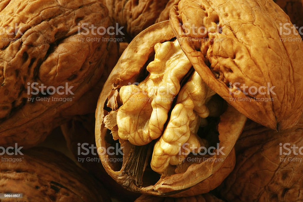 Walnut royalty-free stock photo