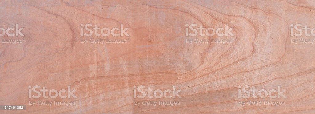 walnut tree, wood stock photo