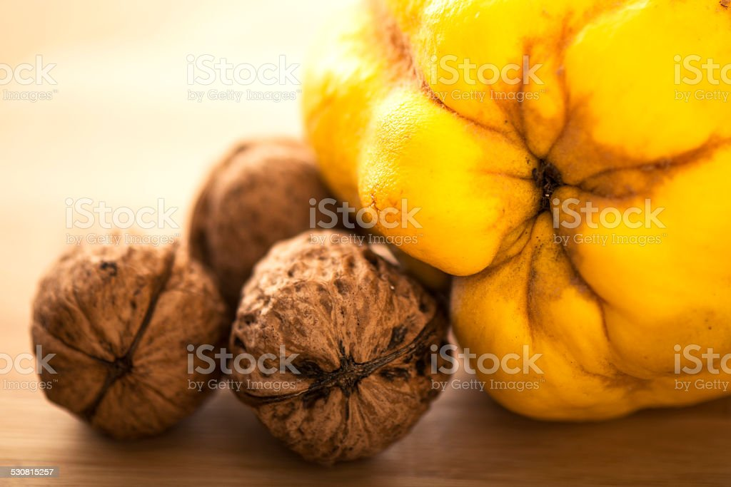 Walnuts and Quince stock photo