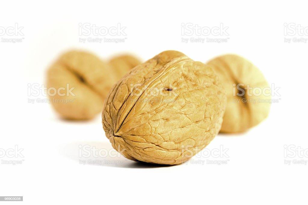 Walnuts A'plenty royalty-free stock photo