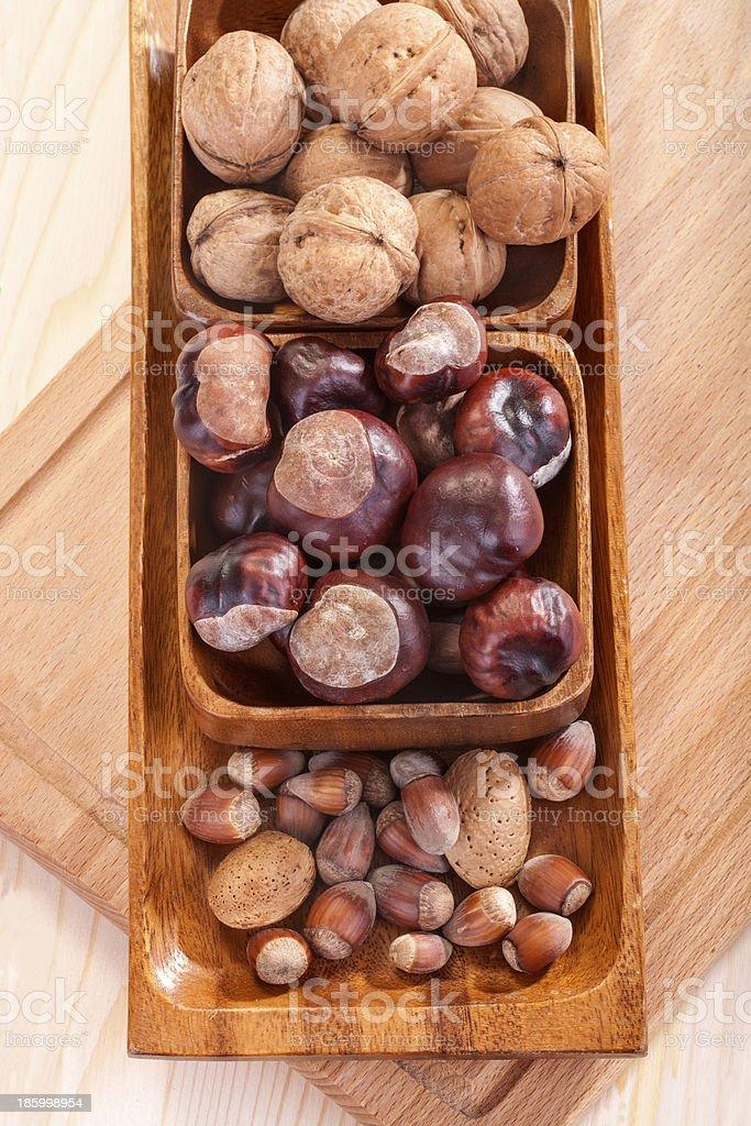 walnuts, chestnuts, hazelnuts and almonds royalty-free stock photo
