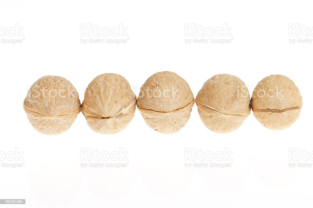 Walnuts in a row royalty-free stock photo