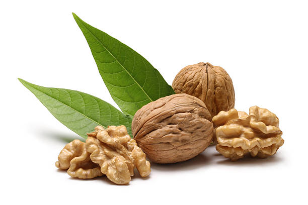 walnuts with leaves isolated on white background - walnut stock photos and pictures