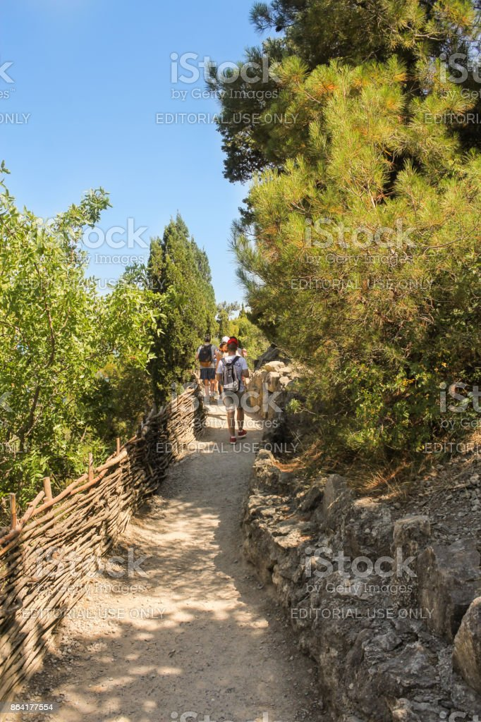 Wandering along the path. royalty-free stock photo
