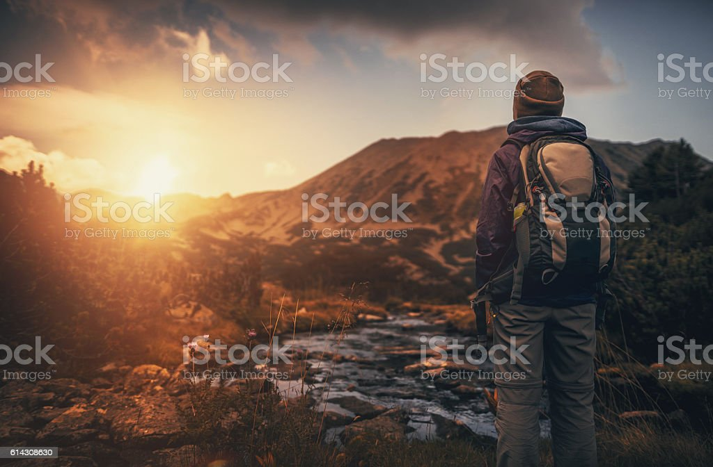 Wandering in the wilderness stock photo