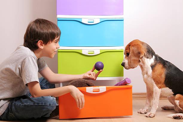 willst du das spiel mit dem ball - lila, grün, schlafzimmer stock-fotos und bilder