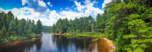 wapizagonke lake in mauricie national park - lakeshore stock photos and pictures