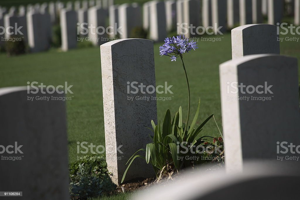 War cemetery royalty-free stock photo
