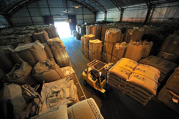 magazzino di valigie piene di caffè, minas gerais, brasile - coffee farmer foto e immagini stock