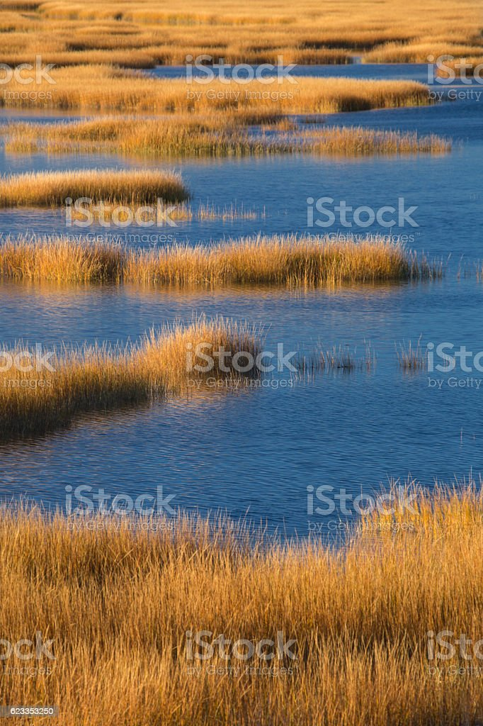 Warm glow of sunset on marsh at Milford Point, Connecticut. stock photo