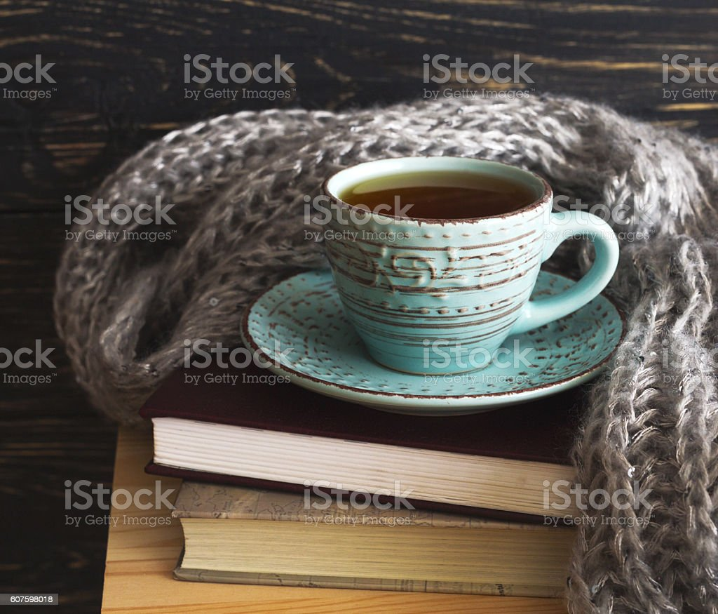 Warm knitted plaid, cup of tea and books – Foto