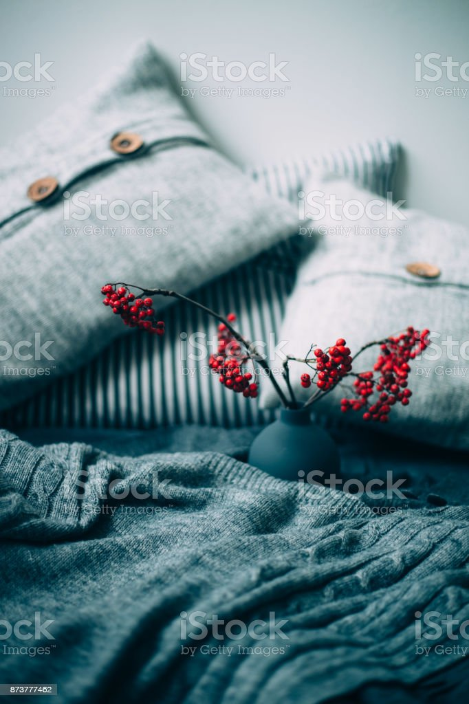 Warm knitted sweater, pillows and rowan berry. Autumn concept stock photo