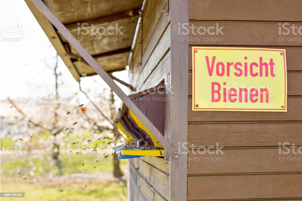 Großgeschrieben Vor Bienenökologie Im Bienenhaus – Foto