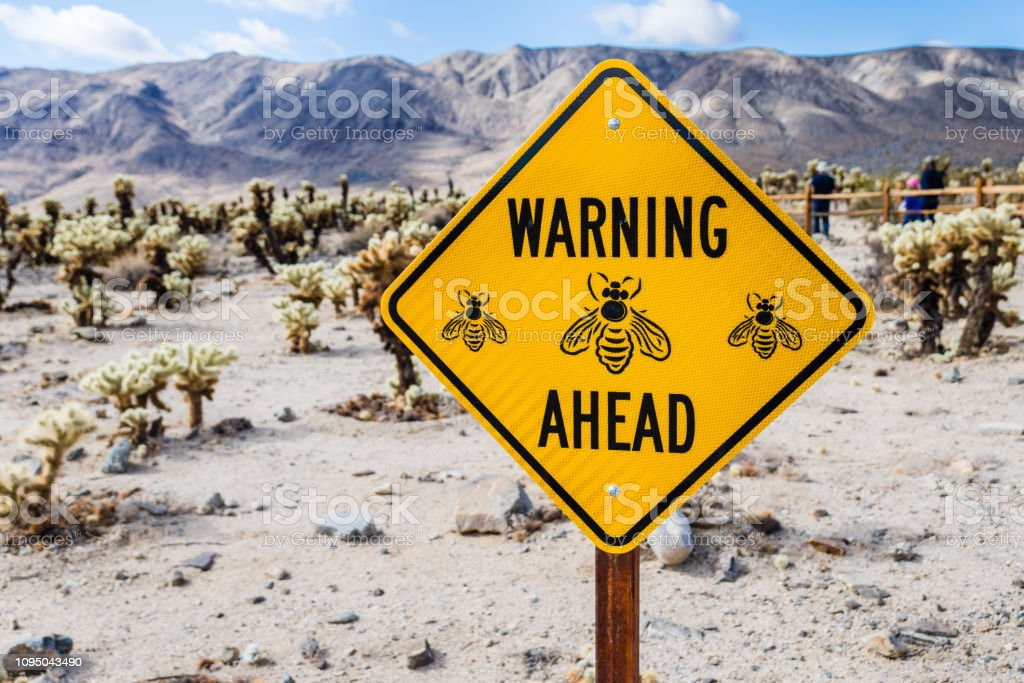 'Warning bees ahead' sign stock photo