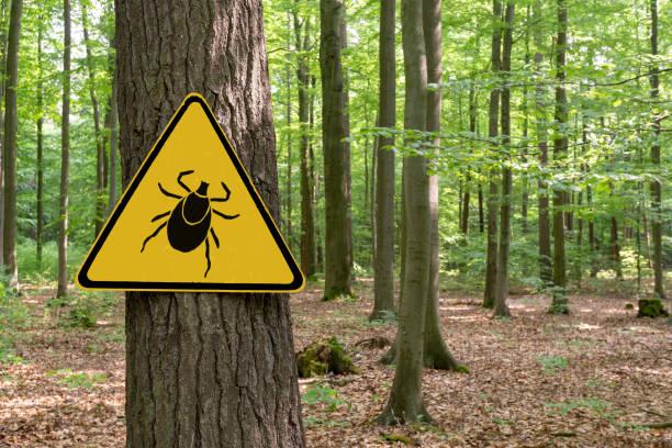 """warnschild """"vorsicht vor zecken"""" in befallener fläche im grünwald - zeckenmittel stock-fotos und bilder"""