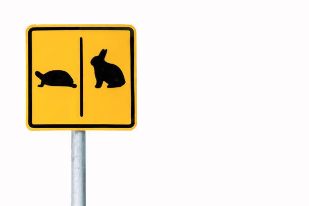 warning sign cross the road rabbit and turtle in public park,clipping path. - powolny zdjęcia i obrazy z banku zdjęć