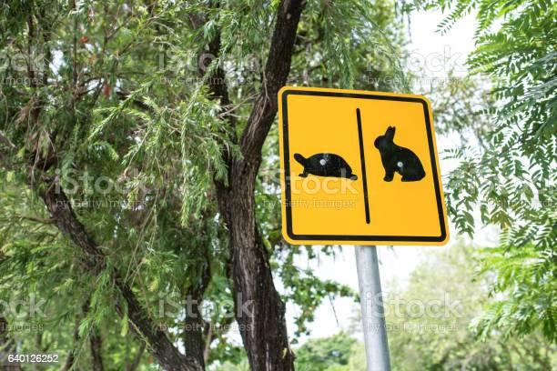 Warning sign cross the road rabbit and turtle picture id640126252?b=1&k=6&m=640126252&s=612x612&h=7v2mawdqbmemk3gxzahrggqiiefa9o4buv0kwclnqti=