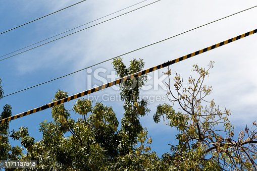 istock Warning Stripe Hanging On Power Lines For Electrocution Protection 1171137518