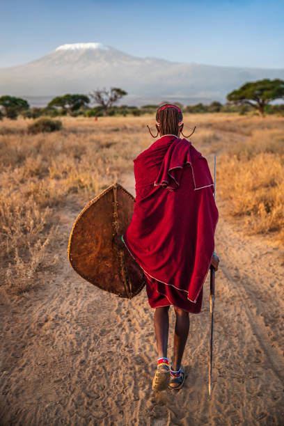 warrior from maasai tribe, mount kilimanjaro on background, kenya, africa - warrior person stock pictures, royalty-free photos & images