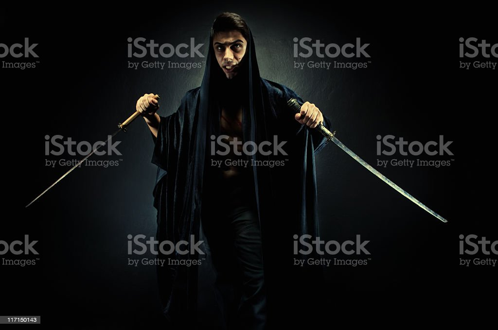 Warrior royalty-free stock photo