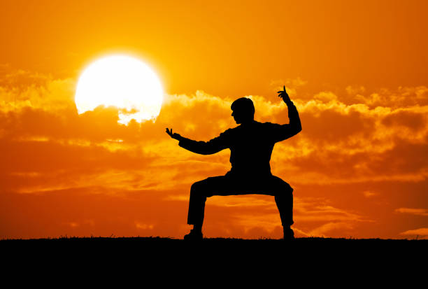 warrior - martial arts stock photos and pictures