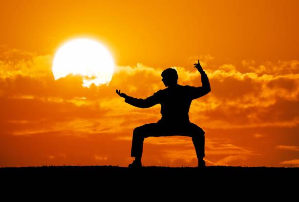 guerrero - artes marciales fotografías e imágenes de stock