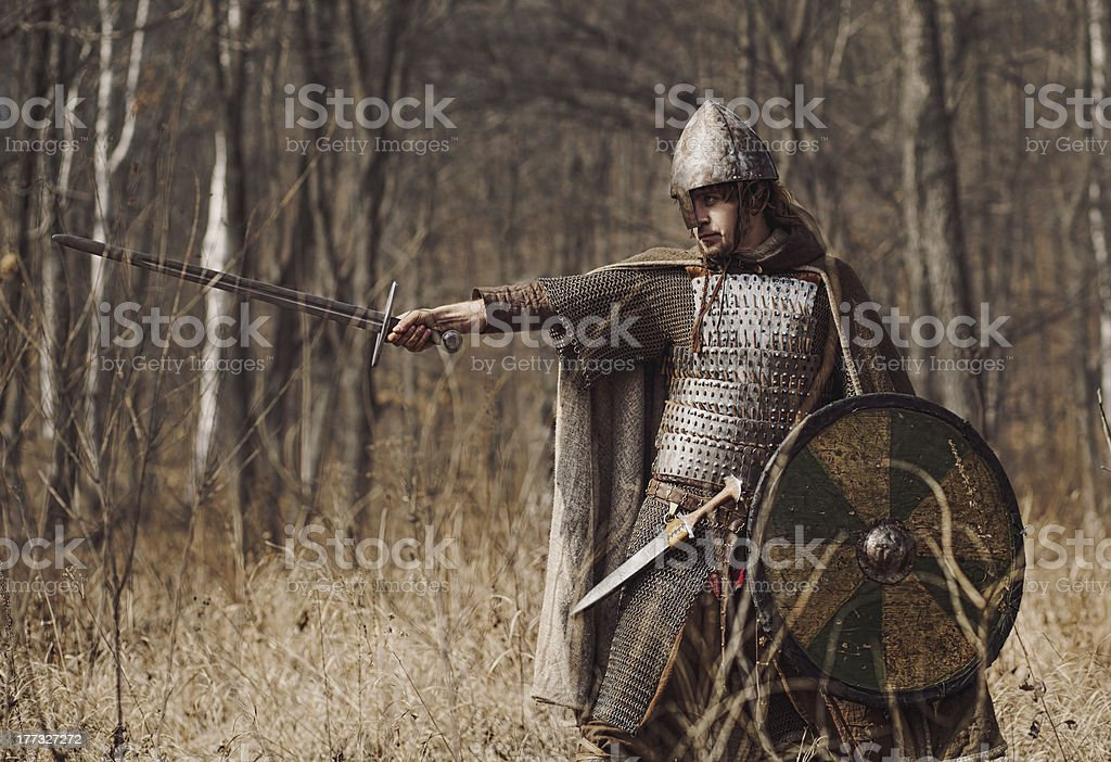 Warriors royalty-free stock photo