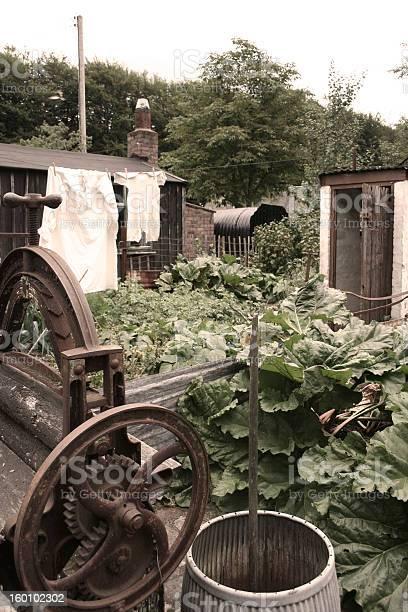 War-time 1940 garden
