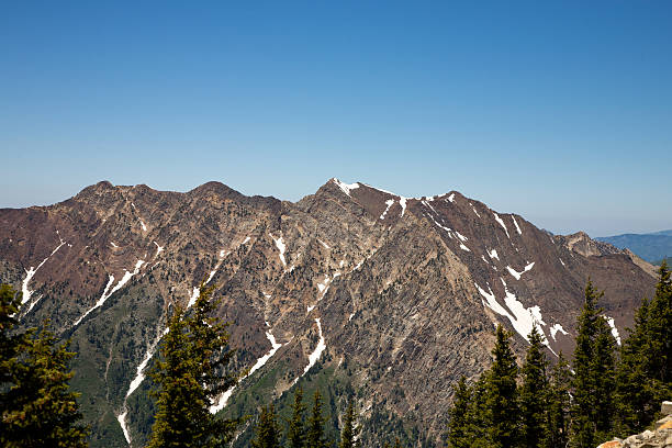 Wasatch Mountains im Sommer – Foto