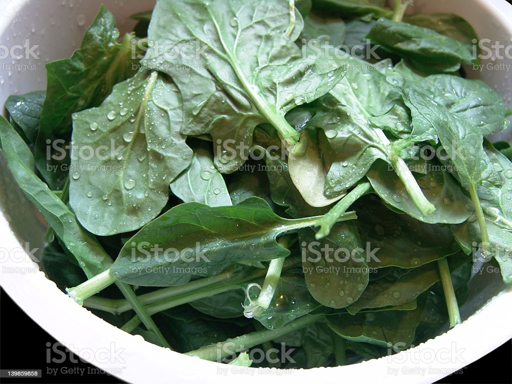 Washed Spinach royalty-free stock photo