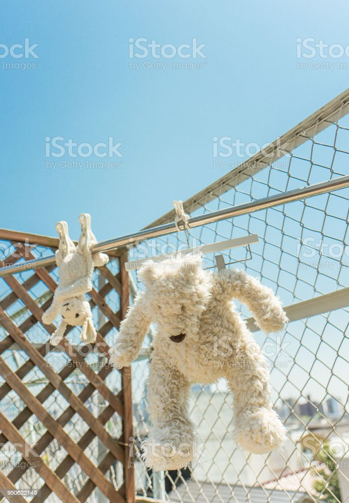 I washed the stuffed animals of sheep and bears on a sunny day.