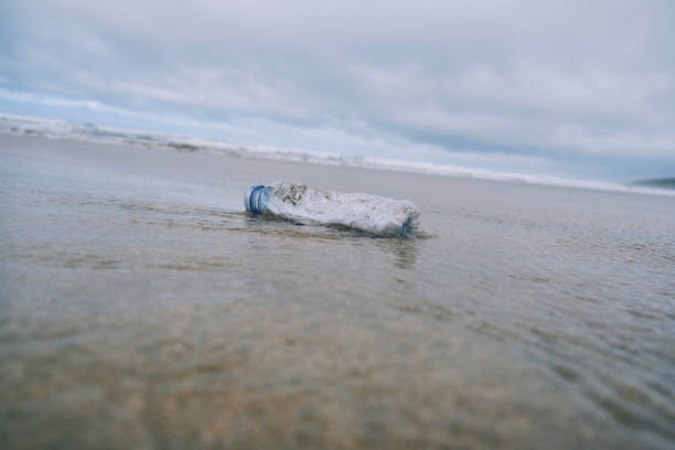 Washed up plastic bottle on a beach. stock photo