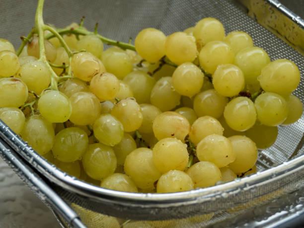 lavado uvas mesa amarela em um close-up strainer - foto de acervo
