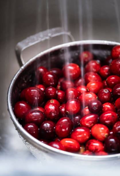 Washing Cranberries stock photo