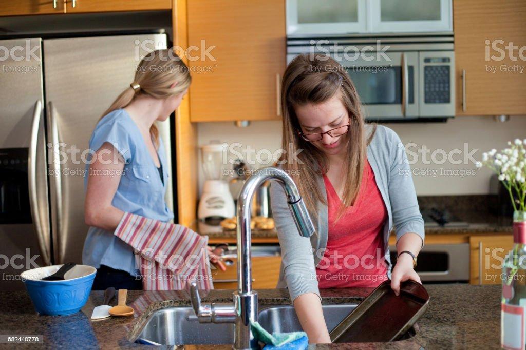 Washing Dishes royalty-free stock photo