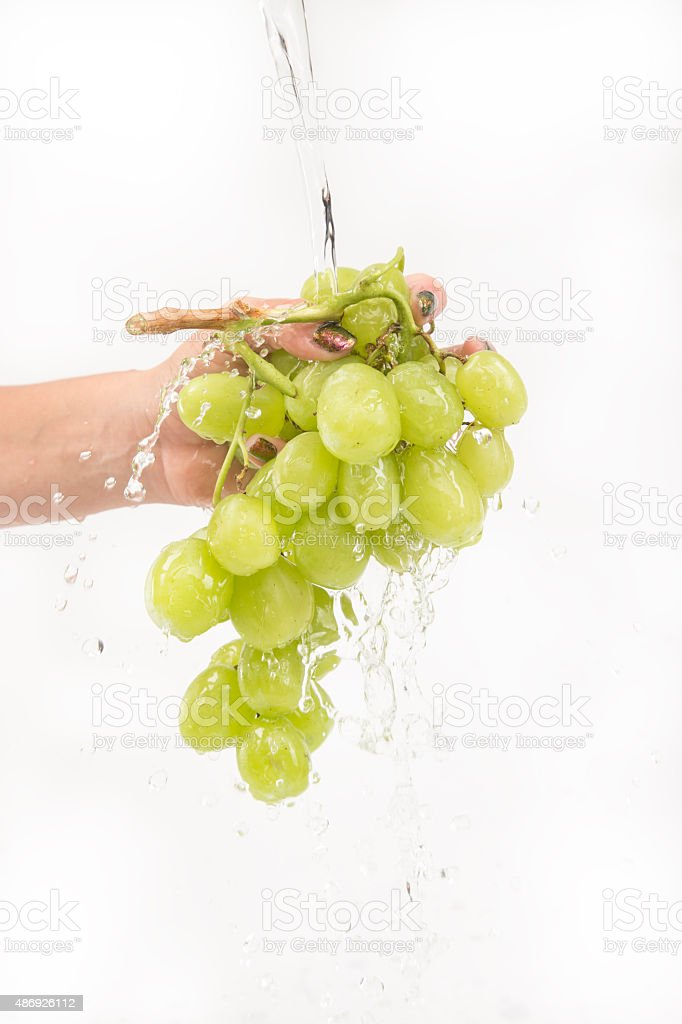Washing Green Grapes Stock Photo Download Image Now Istock