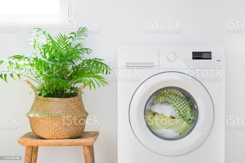Washing machine with laundry, plant pot and sunlight from window