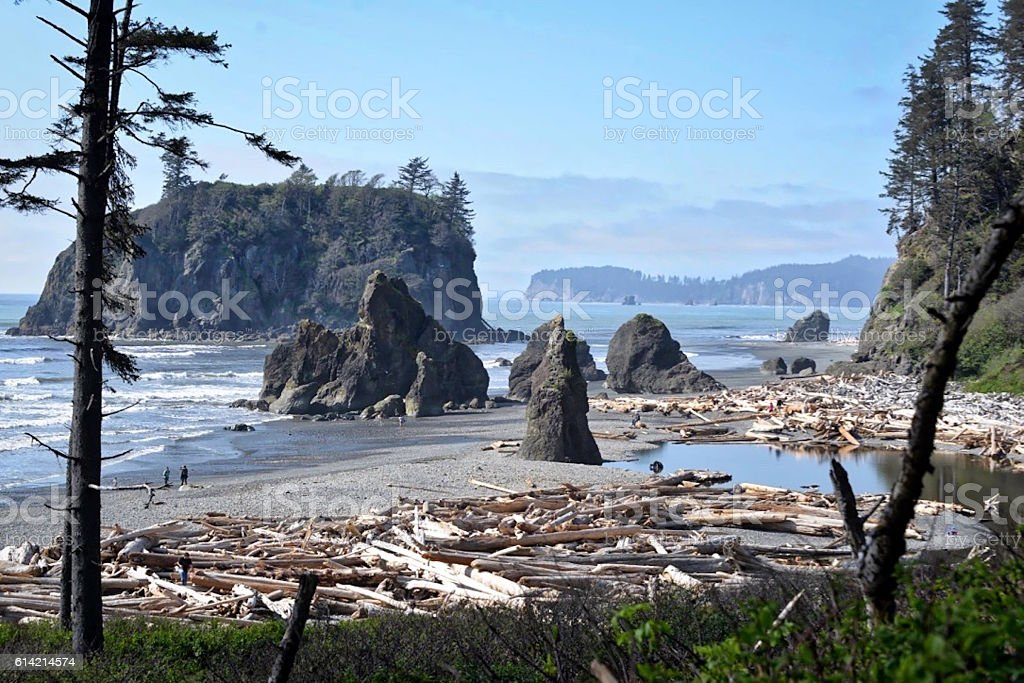 Washington Coast stock photo