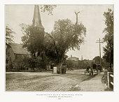 Washington Elm and Memorial Stone, Cambridge, Massachusetts, United States, Antique American Photograph, 1893