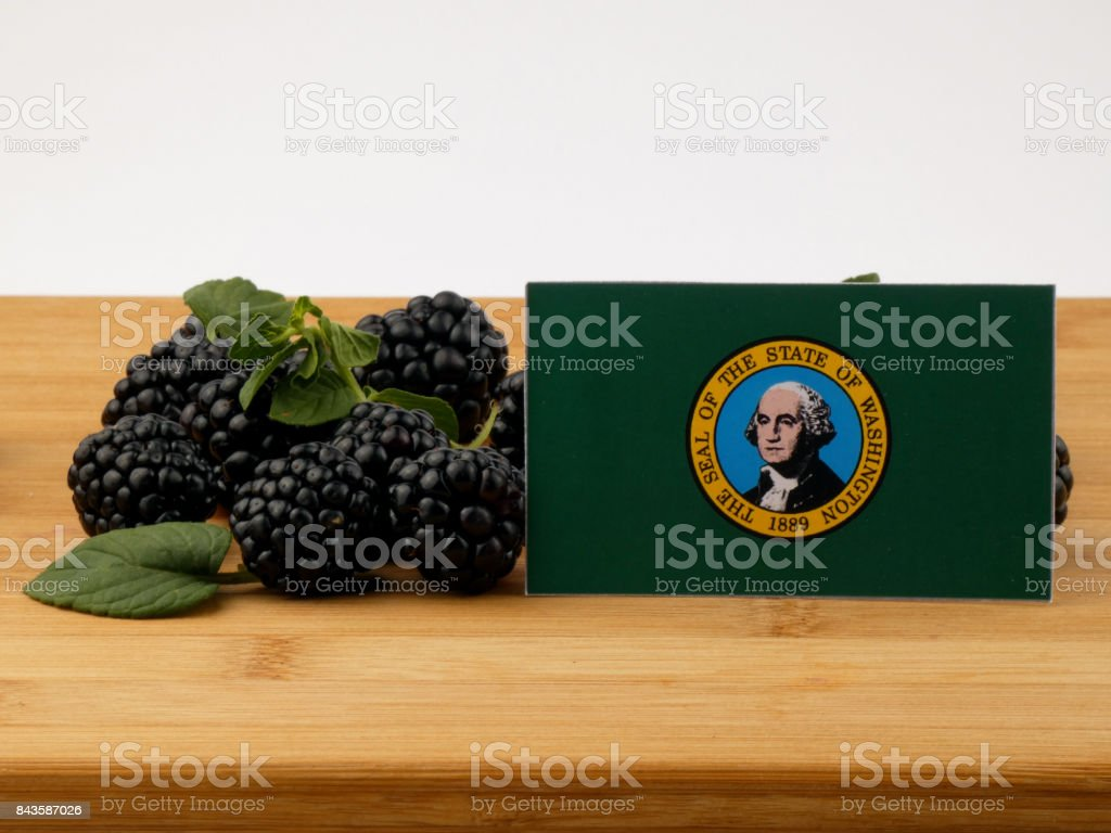 Washington flag on a wooden panel with blackberries isolated on a white background stock photo