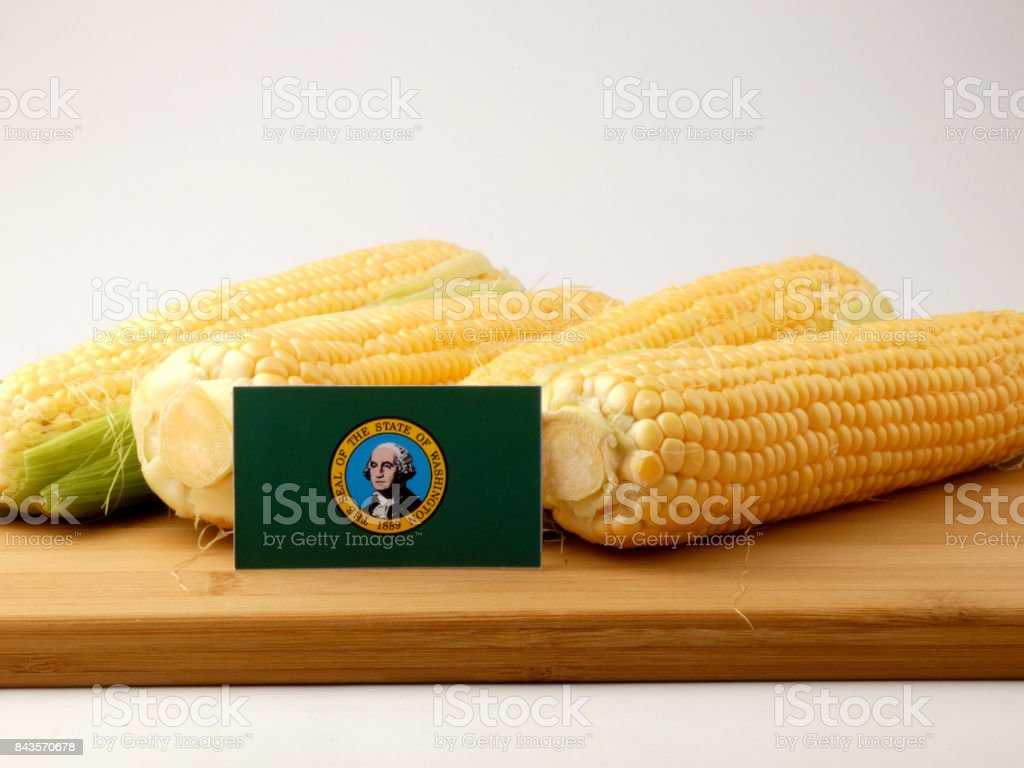 Washington flag on a wooden panel with corn isolated on a white background stock photo