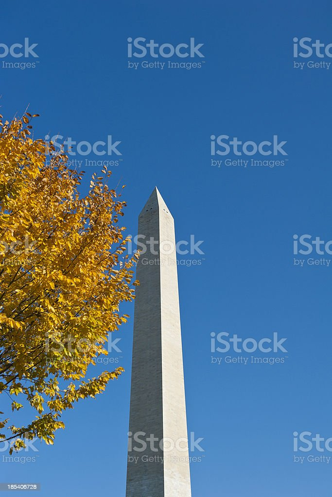 Washington monument at the mall, in DC with colorful tree royalty-free stock photo