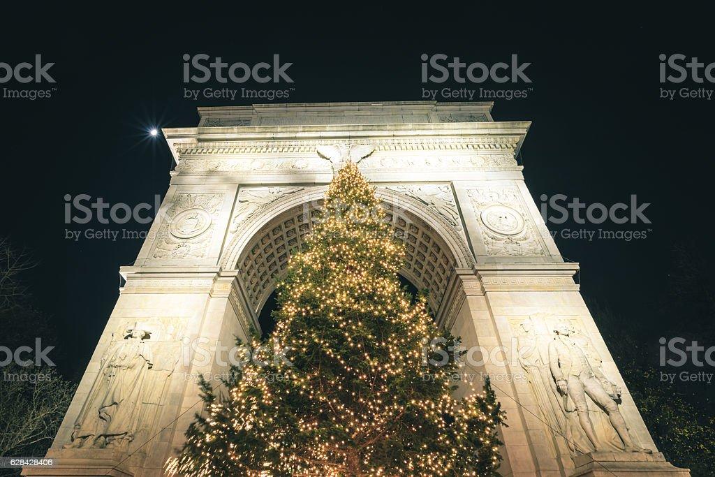 Washington Square Park Tree stock photo